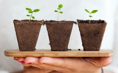 3 Tips for Business Growth